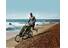 Thule Chariot Cheetah 1 + Strolling Kit - Remorque vélo - vert/noir